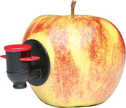 Mobile Saftpresse Westerwald - Saft aus Ihrem Obst. Ein Service der Privatkelterei Junge